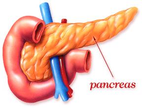 pancreaticsurgery1.jpg